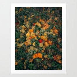 ColorFall Broccoli 3 Art Print