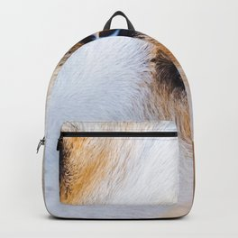Portrait of a lovely stray dog Backpack
