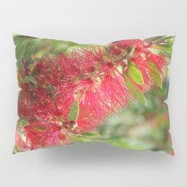 Calliandra Haematocephala Red Powderpuff  Pillow Sham