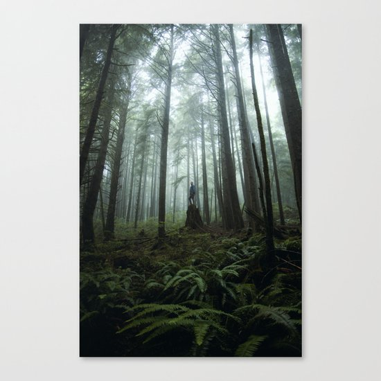 Olympic Forest Canvas Print