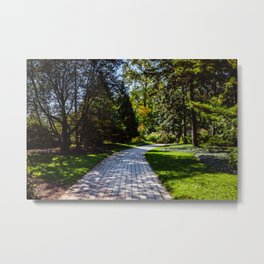 Pathway to the middle of nowhere Metal Print