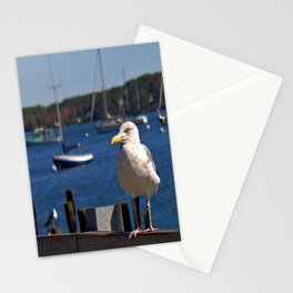 Maine Local Stationery Cards
