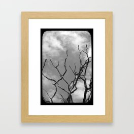 Twisted Branchs Framed Art Print