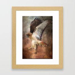 Red Tail Hawk in Vintage Light Framed Art Print