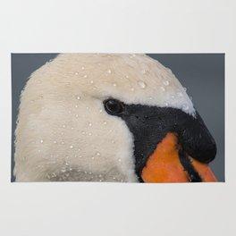 Mute Swan in Winter - CloseUp Rug