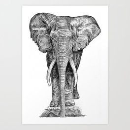 Elephant at the water hole. Art Print