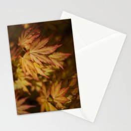 Autumn Acer Stationery Cards