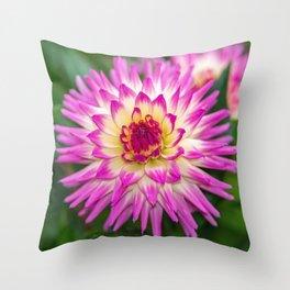 Glenbank Twinkle Dahlia Throw Pillow