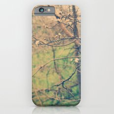 Ethyl Slim Case iPhone 6s