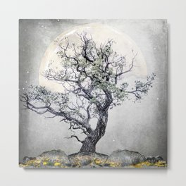LIGHT OF THE MOON Metal Print