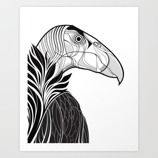 California Condor Art Print