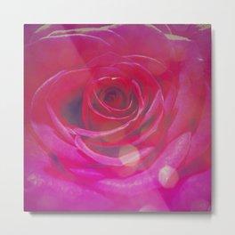 Transcendent Rose 2 Metal Print