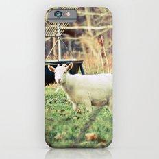 Billy's Bonny Bairn Slim Case iPhone 6s