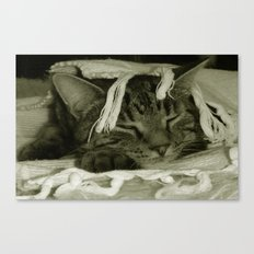 Cat Nap with Diesel Canvas Print