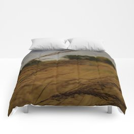 Amber Waves Comforters