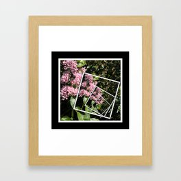 Butterflies and Flowers Framed Art Print
