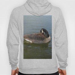 Canadian Goose Hoody
