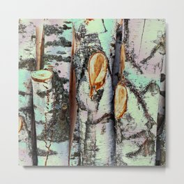 Birch trunks - natural pattern Metal Print