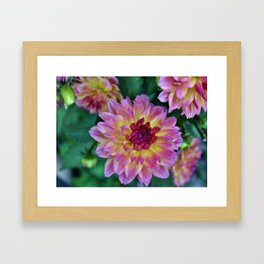 Beauty In The Garden Framed Art Print