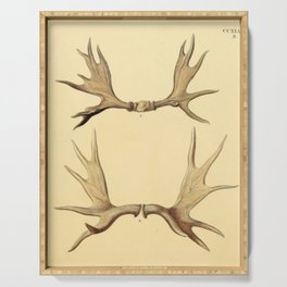 Antique Antlers Serving Tray