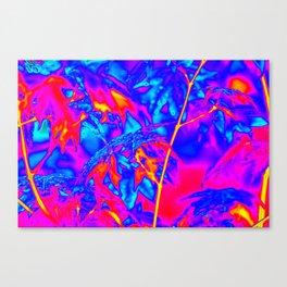 Thermal art 050 Canvas Print