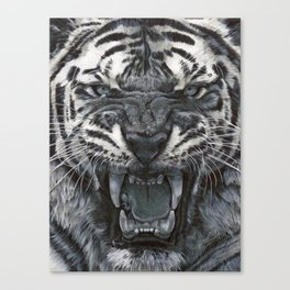 Tiger Roar! - By Julio Lucas Canvas Print