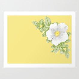 Cherokee Rose (yellow) Art Print