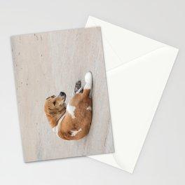 street dog Stationery Cards