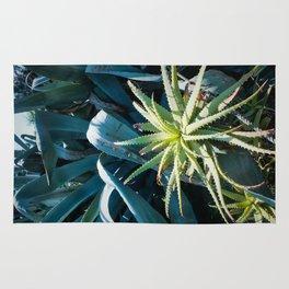 Aloe & Agave Rug