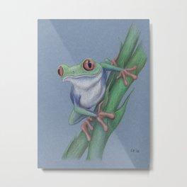 Red-Eyed Tree Frog by Lars Furtwaengler | Colored Pencil | 2010 Metal Print