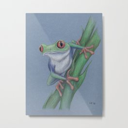 Red-Eyed Tree Frog by Lars Furtwaengler | Colored Pencil | 2010 Metal Print