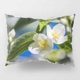 Goblet collection № IV Pillow Sham
