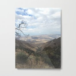 Look Out Metal Print