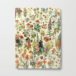 Adolphe Millot- Vintage Flowers Illustration Metal Print