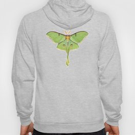 Luna Moth (Actias luna) II Hoody