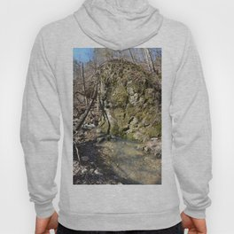 Alone in Secret Hollow with the Caves, Cascades, and Critters, No. 11 of 21 Hoody