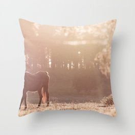 Sunset Graze Throw Pillow