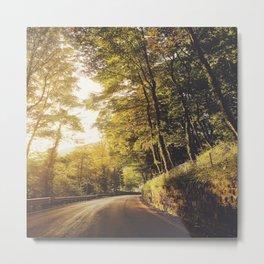 road tree at dusk Metal Print