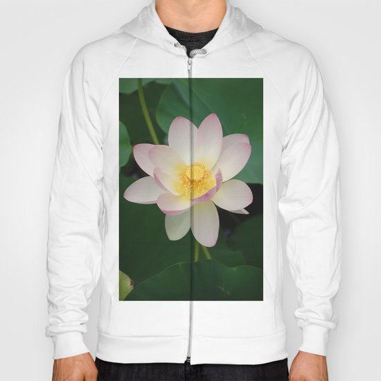 Lotus Blossom in Full Bloom Hoody