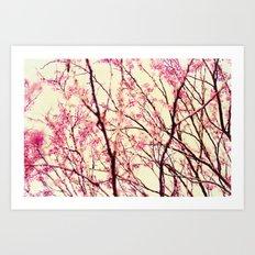 blossom wonderland Art Print