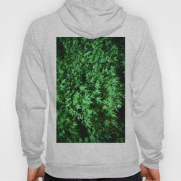 Military support Glow Japanese Maple Hoody