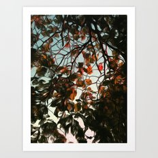 Seasonal Art Print