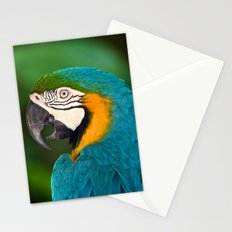 Polly Wanna Cracker?  Stationery Cards