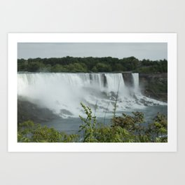 Plants at the Falls Art Print