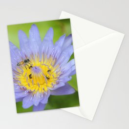 Love Snap Stationery Cards