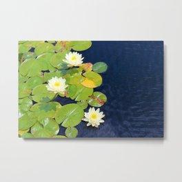 White Lotus Flowers on Lily Pads Metal Print