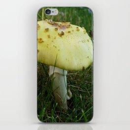 Fly on Magic Mushroom iPhone Skin