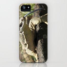 Lace Monitor - Goanna iPhone Case