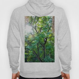 The enchanted woods | Bright tropical forest palm tree exotic green photography Hoody