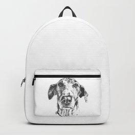 'Sup, dawg? Backpack